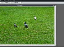 Pixlr Editor免費的雲端繪圖軟體