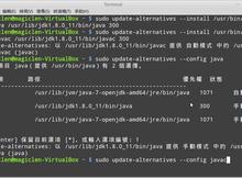 如何在Linux上安裝JDK(Java Development Kit)?
