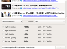 4K Video Downloader 輕鬆下載YouTube等影音網站上的高畫質影片