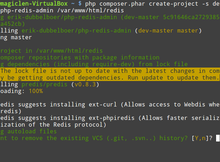Ubuntu如何架設Redis Server並且與PHP一同使用?