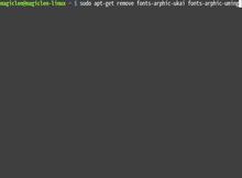 解決Linux系統的中文變成細明體或是標楷體的問題