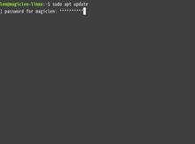 如何設定Linux是否要在使用者輸入sudo密碼時,以星號字元顯示已輸入的密碼長度?
