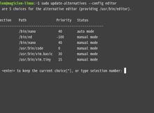如何修改Linux終端機預設的文字編輯器?