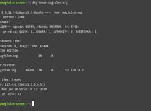 使用Ubuntu Server架設網域名稱伺服器(DNS, Domain Name Server)