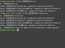 關於在Linux作業系統上解壓縮ZIP檔案時可能會遇到的問題