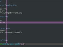 如何連線到遠端的Linux + MongoDB伺服器?