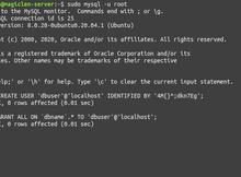 使用Ubuntu Server架設MySQL伺服器,並於PHP程式中存取MySQL資料庫